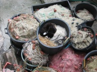 Sleeping in the fishing net barrels at Punta Chiappa.