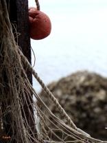 fishing net label